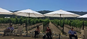 Clients enjoy lunch break at Napa, CA