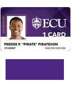 ECU 1 card